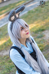 IMG_5806 (Giulia Zucchero) Tags: judy nick nickjudy cosplay cosplayer cosplaygirl cute colorful color italiancosplayer italiancosplay disney disneycosplay pixar zootopia zootropolis kawaii kawaiicosplay kawaiigirl portrait posing people portraitart