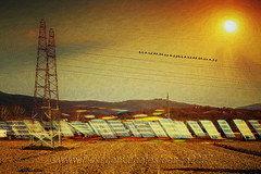 The Sun Worshippers (pongo 2007) Tags: sun solar panels pongo2007 pylon sunshine energy electricity clean