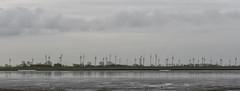 Bensersiel (deakb) Tags: nikon nikkor d500 2470 f28 deutschland germany nordsee bensersiel port hafen wattenmeer waddenzee wadden sea water sand winter sky road village panorama