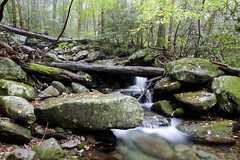 Mountain Creek, Great Smoky Mountain National Park, Tennessee (klauslang99) Tags: klauslang nature naturalworld northamerica national greatsmokymountainsnationalpark tennessee rocks forest landscape water creek mountain