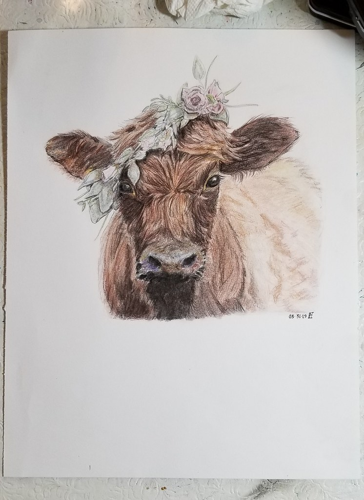 The World's Best Photos of cow and sketch - Flickr Hive Mind