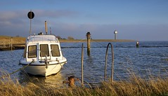 Waarde (Omroep Zeeland) Tags: getijdenhaventje meerpaal vissersbootje haventje bietenhaventje strekdam vloed zon