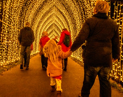 Kew Gardens Light Festival (tramsteer) Tags: tramsteer kew light festival red tunnel people streetphotography london england europe geotag