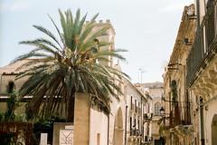 Ortigia, Sicily (jrobertblack) Tags: film filmisnotdead analog canonae1 fd50mm14 kodakfilm portra400 portra