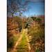 « Les sentiers de traverse qui font le chemin plus court paraissent toujours effroyablement longs. « : Charles Régismanset.