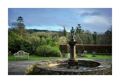 THE TWO GEESE (Barry Haines) Tags: flickrsbest lewtrenchard manor devon