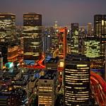 Night in Osaka thumbnail