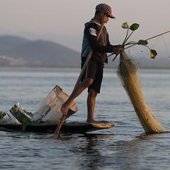 la bonne posture (Patrick Doreau) Tags: pêcheur nasse filet fishing eau water lac lake bateau boat birmanie myanmar asie asia inlé paysage posture tradition culture