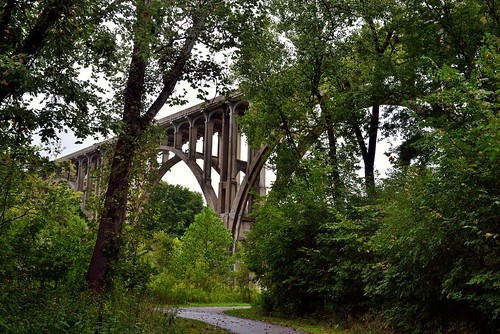 Enjoying a Stroll in the Woods and I Came Across a Bridge (Cuyahoga Valley National Park)