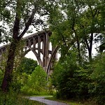 Enjoying a Stroll in the Woods and I Came Across a Bridge (Cuyahoga Valley National Park) thumbnail