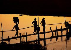 Women Crossing A Brige At Sunset In Bagan, Myanmar (Eric Lafforgue) Tags: asia myanmar burma tourism pagan bagan photography incidentalpeople mediumgroupofpeople silhouette sunset day sun walking bridge outdoors horizontal traditionallymyanmarian ruralscene riverbank colourpicture traveldestinations smallgroupofpeople burma8561