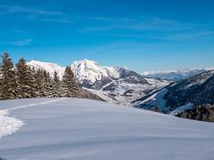 Vorder Höhi (oonaolivia) Tags: vorderhöhi arvenbüel schweiz switzerland nature winter snow landschaft landscape säntis toggenburg alpstein winterscenery