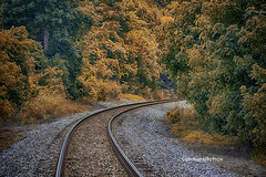 Color Around the Bend (Photographybyjw) Tags: color around bend colorful leaves frame train tracks this early fall shot north carolina ©photographybyjw rural country foliage trees