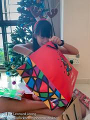 Brown has arrived (Stinkee Beek) Tags: erin christmas