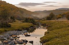 Niebla. (Amparo Hervella) Tags: hayedodelatejeranegra guadalajara españa spain paisaje río agua árbol niebla hierba naturaleza roca atardecer d7000 nikon nikond7000 cielo nube