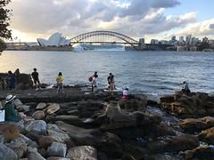 IMG_2310 (dudegeoff) Tags: 20190213sydeveningbikeride february 2019 sydney nsw australia bikerides sydneyharbour domainyurongprecinct parks