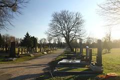 IMG_8500 (Pfluegl) Tags: wien vienna zentralfriedhof graveyard europe eu europa österreich austria chpfluegl chpflügl christian pflügl pfluegl spring frühling simmering