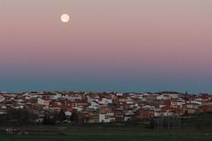 superluna en cinturón de venus (perez rayego) Tags: luna moon superluna equinoccio equinox supermoon cinturóndevenus beltofvenus amanecer sunrise cielo sky