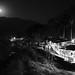 Full Moon, Isla Cuale, Tequila Destillery