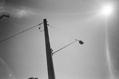 Street light (Matthew Paul Argall) Tags: hanimex35es fixedfocus focusfree 35mmfilm blackandwhite blackandwhitefilm streetlight streetlamp kentmerepan100 100isofilm