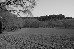 Through the ages (worldthroughalens74) Tags: blackandwhite farm field ploughed uk england staffs nature outdoors canon sigma spring trees