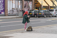 PHOTOGRAPHER AT WORK [ OUTSIDE CITY HALL IN BELFAST]-151058 (infomatique) Tags: photographer cityhall belfast march 2019 brexitweek streetsofbelfast streetphotography williammurphy infomatique fotonique sony a7riii ireland northernireland uk redhead redhair pink nikkoncamera