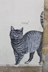 13 bis_5332 rue Delouvain Paris 19 (meuh1246) Tags: streetart paris animaux 13bis ruedelouvain paris19 chat