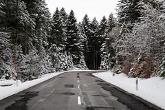 Winter (Guy Goetzinger) Tags: nikon d850 goetzinger forest wood road black snow 2019 winter foret hiver