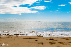 Praia do Mucugê (Bodeccn) Tags: canon t6i landscape nature bahia portoseguro arraialdajuda