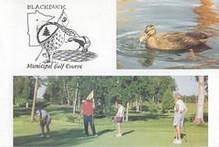 "A Minnesota Golf Scorecard (rbglasson) Tags: minnesota scorecards scorecard golf golfscorecard collectibles ""scorecard collecting"" memorabilia hobby"