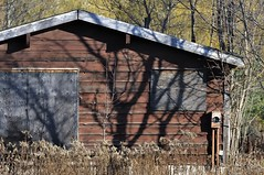 Boarded-up 1950s summer vacation home, Caledon, Ontario (edk7) Tags: nikond300 nikonafsnikkor70200mm128giiedswmvredif edk7 2011 canada ontario peelregion caledon inglewood abandoned derelict shack cottage vacationhome weatheredwood architecture building oldstructure 1950s country countryside rural tree weed brush barnboard siding plywood electricalmeterpost boardedup shadow
