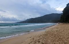 Baie Beau Vallon / Пляж Бэ Бо Валон (dmilokt) Tags: природа nature пейзаж landscape море sea пляж beach песок sand пальма palm небо sky облако cloud dmilokt nikon d850