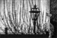 Shadows on the wall (Eva Haertel) Tags: eva haertel stadt city strase street haus house wand wall sonnenlicht licht light sunlight shadow schatten laterne streetlamp sw schwarzweis bw blackandwhite