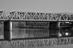 Railway Bridge on the Arno (RoyBatty83) Tags: pentax pentaxk5 k5 pentaxiani sportivo 55300 dahd55300wr pentaxdahd55300mmf458edwr arno river waterreflexes watermirroring mirror flow firenze tuscany toscana blackandwhite bw biancoenero bn blackwhite monocromo monocrome