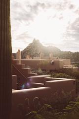 (JawshBeavz) Tags: scottsdale az arizona four seasons travel party explore desert whatever cactus troonnorth