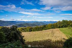 Mitad y mitad (SantiMB.Photos) Tags: 2blog 2tumblr 2ig garrotxa girona otoño autumn campo field maíz corn volcán volcano geo:lat=4214848133 geo:lon=247405400 geotagged santmiqueldecorb cataluna españa esp