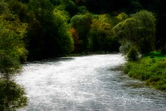 RIVER OURTHE (Sonja Ooms) Tags: belgie belgium green nature ourthe river riverourthe water