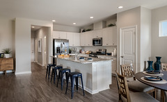 Independence (Shea and Trilogy Communities) Tags: markboisclair architecturalphotography phoenix az usa