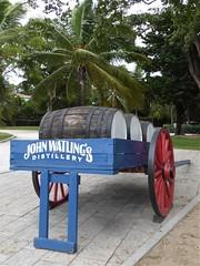 Nassau, Bahamas, Day 3 -- Caribbean Cruise Vacation, John Watling's Distillery, Wagon (Mary Warren 12.9+ Million Views) Tags: nassaubahamas cruise hollandamerica veendam johnwatlingsdistillery wagon barrels nature flora plants tree palmtree