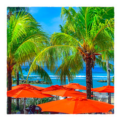 Sugar Bay (Timothy Valentine) Tags: 2018 0418 beach caribbean palm umbrella sky vacation sliderssunday bridgetown christchurch barbados bb