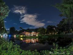 nocturna jardín botánico Bogotá - night view botanical garden_2 (Luis FrancoR) Tags: nocturnajardínbotánicobogotánightviewbotanicalgarden nocturnajardínbotánico night nightview lagoon ngw ngs ngd ngg ng ngc ngo luisfrancor francor