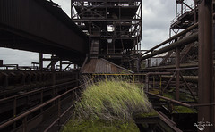 Green green grass of home. (Left in the Lurch) Tags: urbex abandoned industry steel factory blastfurnace