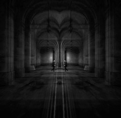 The reflection is for the colors What the echo is for the sound (Fan.D & Dav.C Photgraphy) Tags: arch column vault amphitheater gothic ceiling marble step architecture travel stone europe city arcade street monument light ancient tourism cathedral historic france night old black white walking