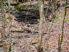 IMGPJ48001_Fk - Horseman Hide-A-Way Spring Cave (David L. Black) Tags: corydon indiana unitedstates us cave olympusomdem1mkii olympus1240f28