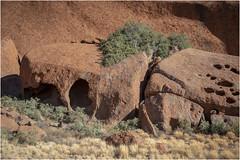 Base Walk@Uluru (:: Blende 22 ::) Tags: tree baum australia australien nothernterritory outback olgas katatjuta uluru ayersrock basewalk redrocks redcentre rocks bluesky canoneos5dmarkiv ef2470mmf28liiusm