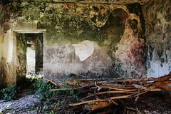 intense (sandrorotonaria) Tags: ruins san pietro infine green mildew war abbandoned