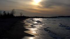 015 -1crpvibfwlcon (citatus) Tags: wards island beach islands toronto canada spring morning 2019 pentax k3 ii