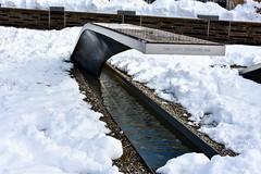DSC_0028 (bsiu99) Tags: 911 dcsnow snowday pentagon pentagonmemorial