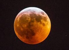 Ravi_20190121DSC_1922 (suryakantan) Tags: total lunar eclipse nikon d800 nikkor20050056ed 500mm 56f origin summit nj usa