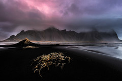 Life on Mars (Pete Rowbottom, Wigan, UK) Tags: iceland winter sunrise mars pink purple redds grass vestrahorn sea ocean nature beauty landscape mountains clouds scandinavian dawn colourful seascape peterowbottom nikond810 surreal owl shoreline hills blackbeach blacksand water outdoors moody eerie strange dramatic southerniceland plain expanse windy weather volcanic outside nikon nikkor beach